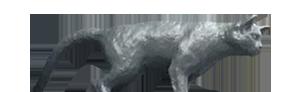 Ohmori Cat
